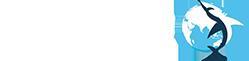 Барракуда – Таможенное оформление
